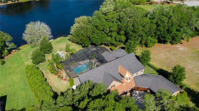 19708 Sea Rider Way, Lutz, FL 33559 (MLS #U8040930) :: Mark and Joni Coulter | Better Homes and Gardens