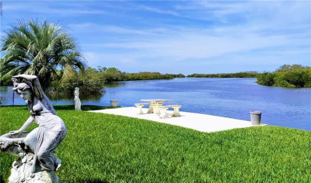 4439 Rickover Court, New Port Richey, FL 34652 (MLS #U8041176) :: Cartwright Realty