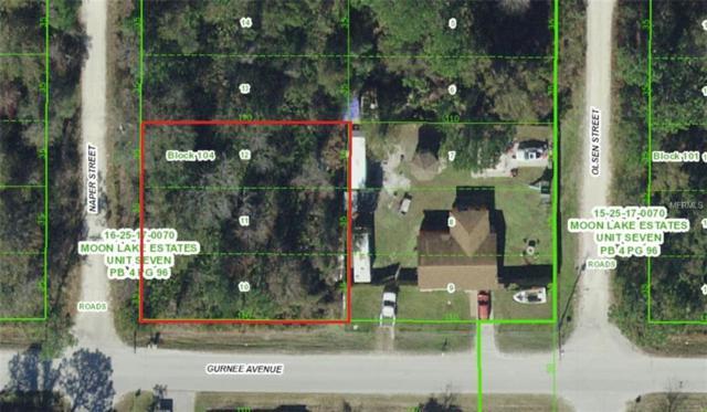 Gurnee Avenue 10-12, New Port Richey, FL 34655 (MLS #U8041197) :: GO Realty