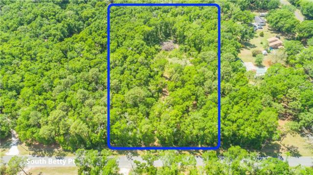 12828 S Betty Point, Floral City, FL 34436 (MLS #U8041239) :: The Duncan Duo Team