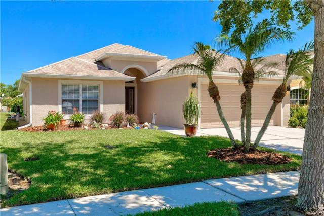 22712 Hawk Hill Loop, Land O Lakes, FL 34639 (MLS #U8041268) :: Team Bohannon Keller Williams, Tampa Properties