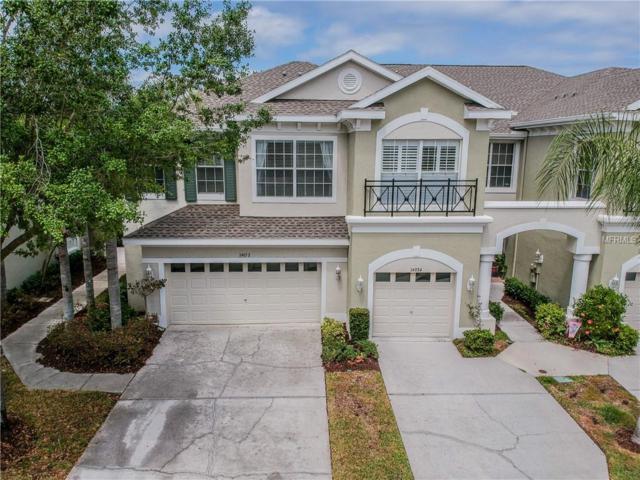14052 Waterville Circle, Tampa, FL 33626 (MLS #U8041272) :: Team Bohannon Keller Williams, Tampa Properties