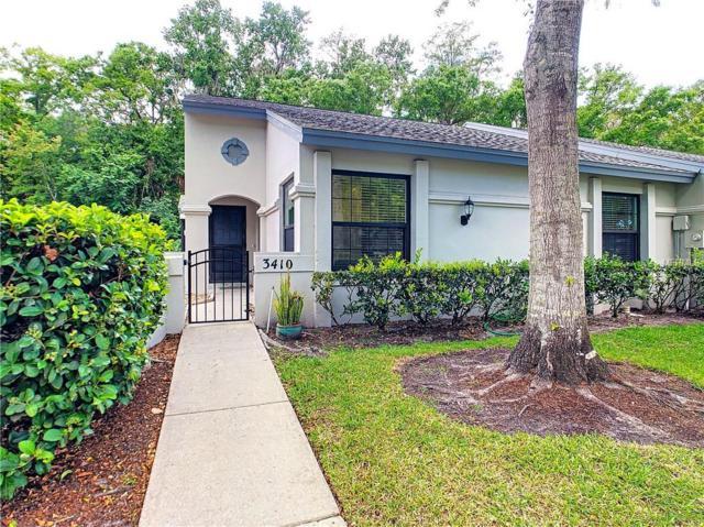 3410 Killdeer Place, Palm Harbor, FL 34685 (MLS #U8041335) :: Cartwright Realty