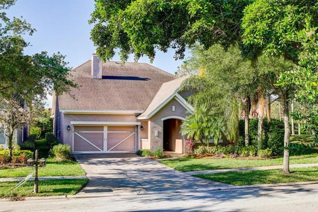11646 Meridian Point Drive, Tampa, FL 33626 (MLS #U8041520) :: Andrew Cherry & Company