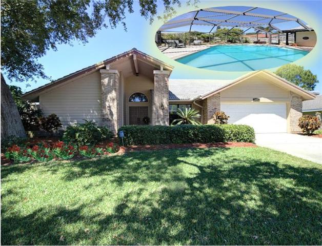 2770 Scobee Drive, Palm Harbor, FL 34683 (MLS #U8041556) :: Remax Alliance