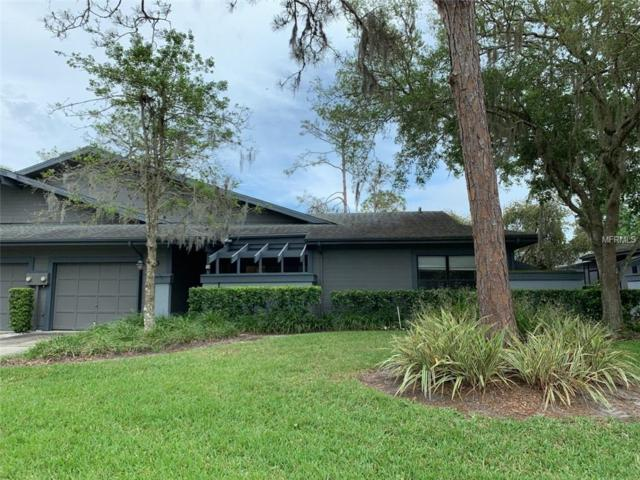 30 Morning Dove Place, Oldsmar, FL 34677 (MLS #U8041657) :: Cartwright Realty