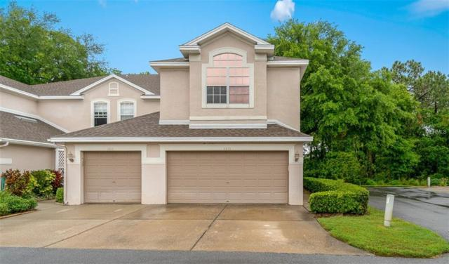 3613 Country Pointe Place, Palm Harbor, FL 34684 (MLS #U8041873) :: Myers Home Team