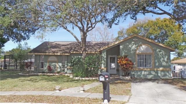 Address Not Published, Port Richey, FL 34668 (MLS #U8041966) :: The Duncan Duo Team