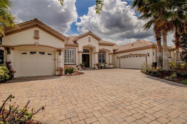 20103 Oak Alley Drive, Tampa, FL 33647 (MLS #U8042097) :: Team Bohannon Keller Williams, Tampa Properties