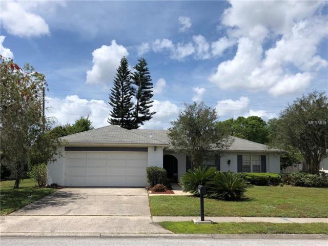 3335 Rankin Drive, New Port Richey, FL 34655 (MLS #U8042160) :: Team Bohannon Keller Williams, Tampa Properties