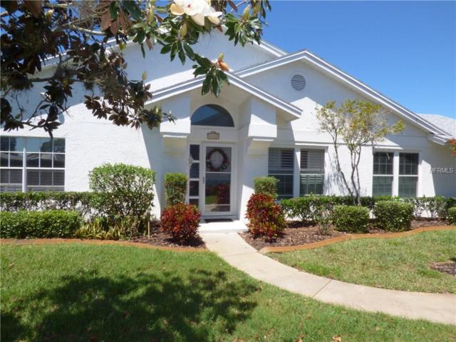 4142 Castlewood Drive, Holiday, FL 34691 (MLS #U8042311) :: Cartwright Realty