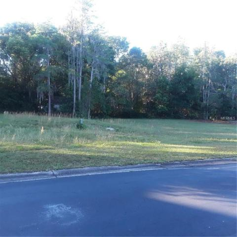 00 Cherry Ridge Place, Land O Lakes, FL 34637 (MLS #U8042346) :: McConnell and Associates