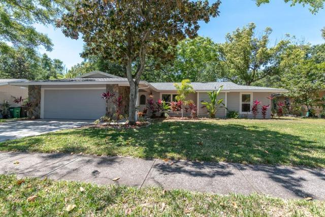 51 Valencia Circle, Safety Harbor, FL 34695 (MLS #U8042362) :: Myers Home Team
