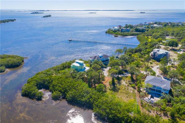 Osprey Court, Palm Harbor, FL 34683 (MLS #U8042378) :: The Duncan Duo Team