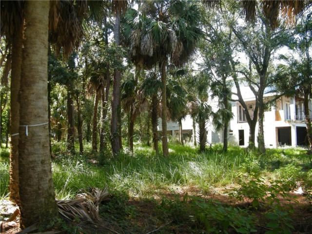 Phoenix Avenue, Oldsmar, FL 34677 (MLS #U8042400) :: Team Bohannon Keller Williams, Tampa Properties