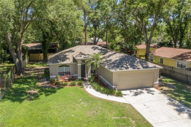2632 Glenview Drive, Land O Lakes, FL 34639 (MLS #U8042452) :: NewHomePrograms.com LLC