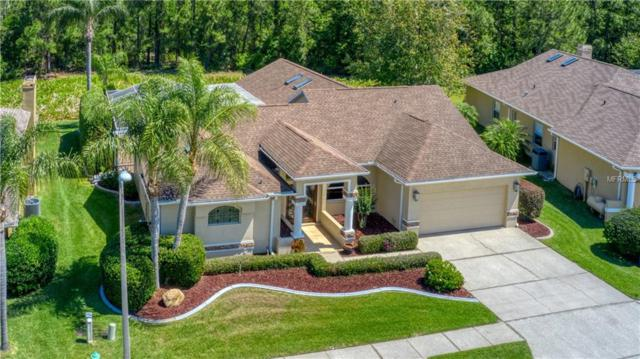 1234 Middlesex Drive, New Port Richey, FL 34655 (MLS #U8042480) :: Griffin Group