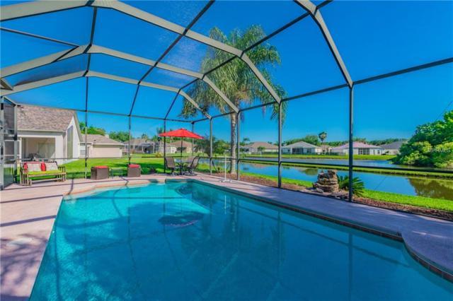 29646 Forest Glen Drive, Wesley Chapel, FL 33543 (MLS #U8042592) :: Team Bohannon Keller Williams, Tampa Properties
