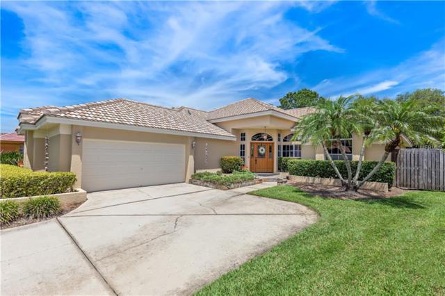 961 Live Oak Avenue NE, St Petersburg, FL 33703 (MLS #U8042596) :: Baird Realty Group