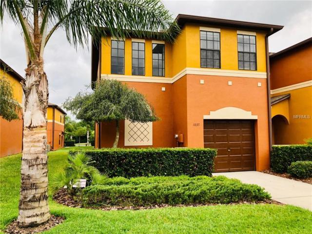 1037 Blackwater Drive, Wesley Chapel, FL 33543 (MLS #U8042697) :: Team Bohannon Keller Williams, Tampa Properties