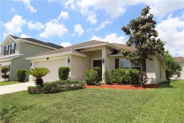 20206 Still Wind Drive, Tampa, FL 33647 (MLS #U8042706) :: Team Bohannon Keller Williams, Tampa Properties