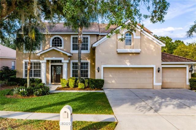 18009 Avalon Ln, Tampa, FL 33647 (MLS #U8042730) :: Dalton Wade Real Estate Group