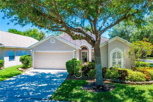 737 Straw Lake Drive, Brandon, FL 33510 (MLS #U8042735) :: Griffin Group