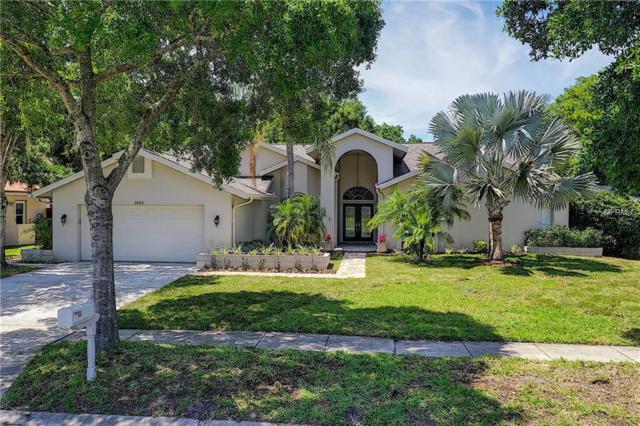 3985 Belmoor Drive, Palm Harbor, FL 34685 (MLS #U8042744) :: Andrew Cherry & Company
