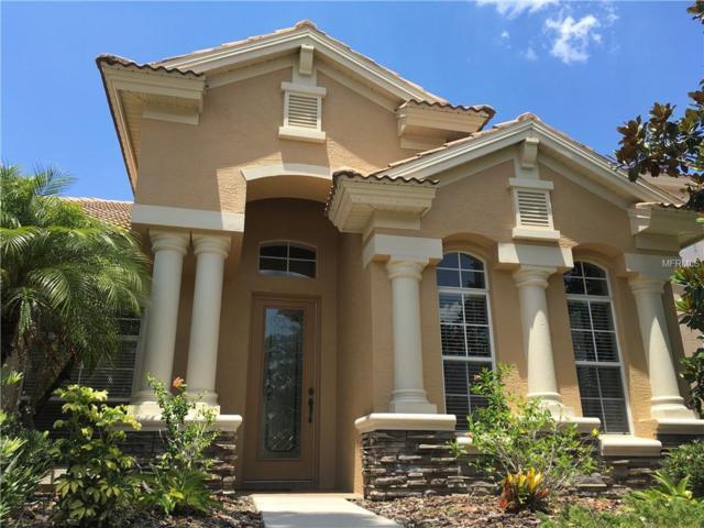14740 San Marsala Court, Tampa, FL 33626 (MLS #U8042761) :: Myers Home Team