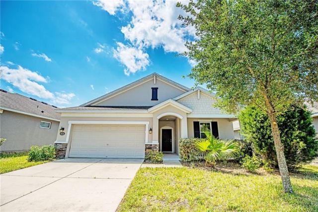 30546 Casewell Place, Wesley Chapel, FL 33545 (MLS #U8042765) :: Team Bohannon Keller Williams, Tampa Properties