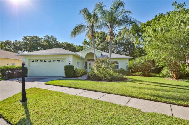 3045 Crest Drive, Clearwater, FL 33759 (MLS #U8042812) :: Andrew Cherry & Company