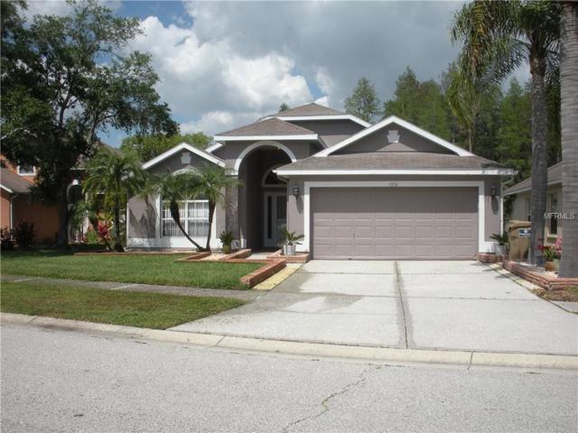 7231 Sharpsburg Boulevard, New Port Richey, FL 34653 (MLS #U8042861) :: Homepride Realty Services