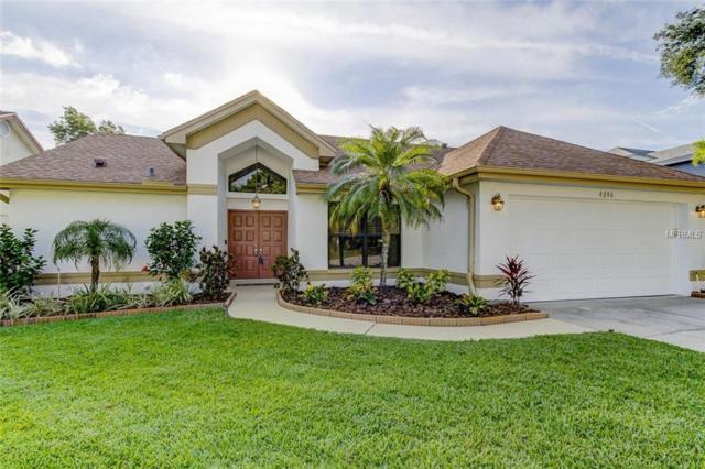 4896 Klosterman Oaks Boulevard, Palm Harbor, FL 34683 (MLS #U8042892) :: RE/MAX CHAMPIONS