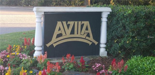 17053 Comunidad De Avila, Lutz, FL 33548 (MLS #U8042910) :: RE/MAX Realtec Group