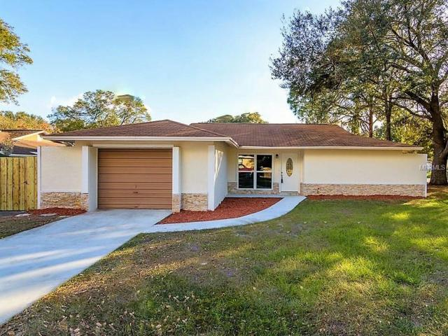17723 Rivendel Road, Lutz, FL 33549 (MLS #U8042913) :: Andrew Cherry & Company