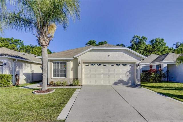 25807 Crippen Drive, Land O Lakes, FL 34639 (MLS #U8042936) :: RE/MAX CHAMPIONS