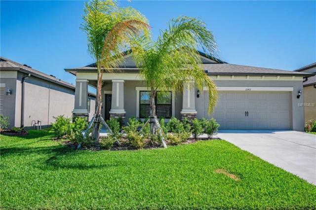 11431 Amapola Bloom Court, Riverview, FL 33579 (MLS #U8043018) :: Paolini Properties Group