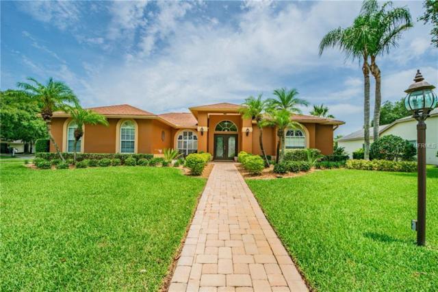 2016 Swan Lane, Palm Harbor, FL 34683 (MLS #U8043030) :: Paolini Properties Group