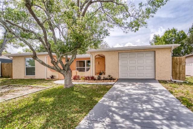 7040 Fox Hollow Drive, Port Richey, FL 34668 (MLS #U8043091) :: Paolini Properties Group