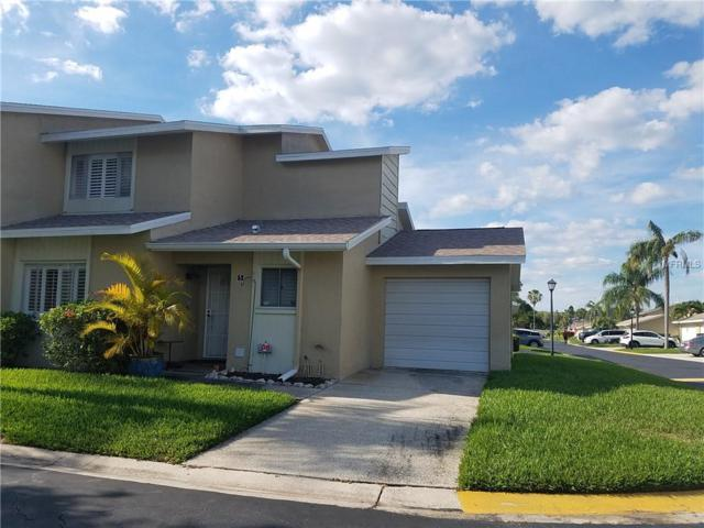 1651 Cape Hope Avenue NE #5, St Petersburg, FL 33702 (MLS #U8043250) :: Cartwright Realty