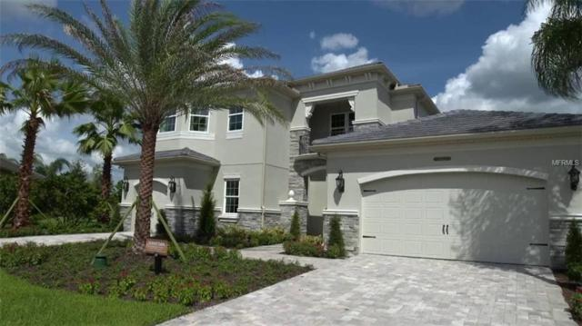 30661 Tumbleberry Street, Wesley Chapel, FL 33543 (MLS #U8043310) :: Keller Williams On The Water Sarasota