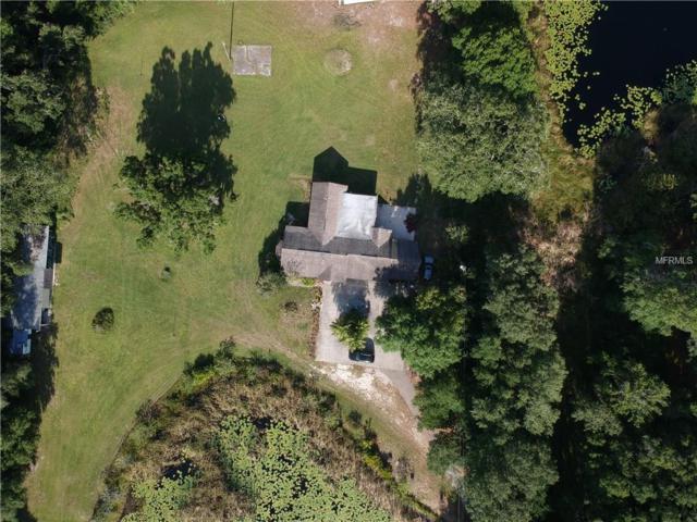 16143 Hanna Road, Lutz, FL 33549 (MLS #U8043312) :: Premium Properties Real Estate Services