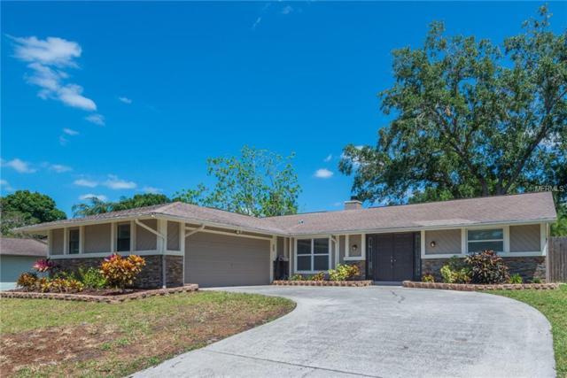 556 Hammock Drive, Palm Harbor, FL 34683 (MLS #U8043790) :: Delgado Home Team at Keller Williams