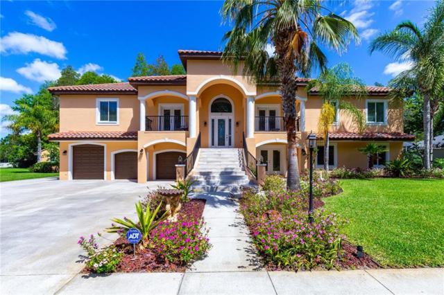 10509 Hinds Place, Odessa, FL 33556 (MLS #U8043926) :: Jeff Borham & Associates at Keller Williams Realty