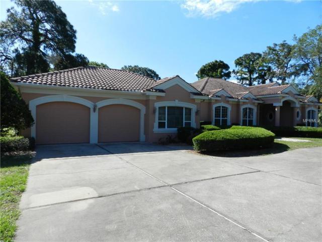 1011 Riverside Ridge Road, Tarpon Springs, FL 34688 (MLS #U8043938) :: The Duncan Duo Team