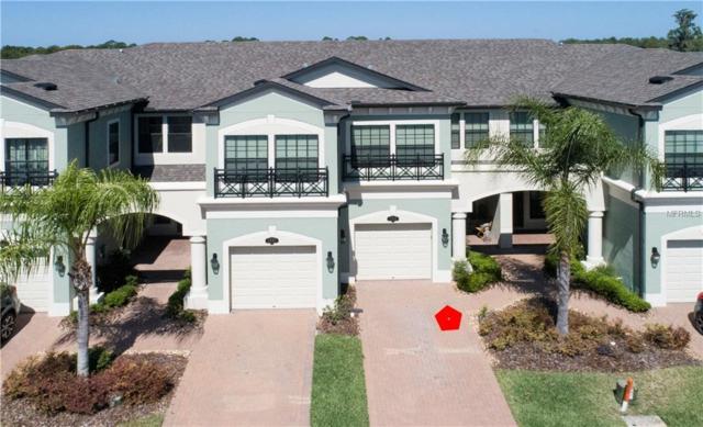 2005 Milkweed Trace, Lutz, FL 33558 (MLS #U8044006) :: Dalton Wade Real Estate Group
