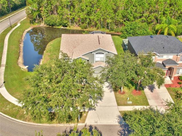 13206 Royal George Avenue, Odessa, FL 33556 (MLS #U8044147) :: Medway Realty