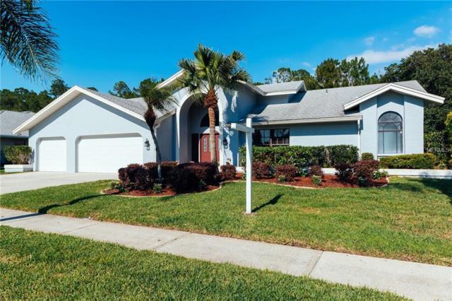 3780 Windber Boulevard, Palm Harbor, FL 34685 (MLS #U8044570) :: Lovitch Realty Group, LLC
