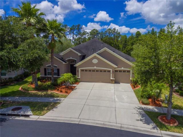 3247 Diamond Falls Circle, Land O Lakes, FL 34638 (MLS #U8044705) :: Premium Properties Real Estate Services