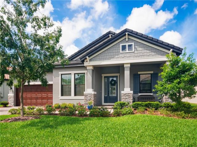 3371 Barbour Trail, Odessa, FL 33556 (MLS #U8044727) :: Cartwright Realty